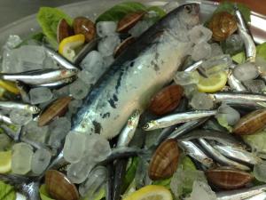 Pesce Azzurro 1