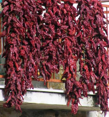 peperoni cruschi 2