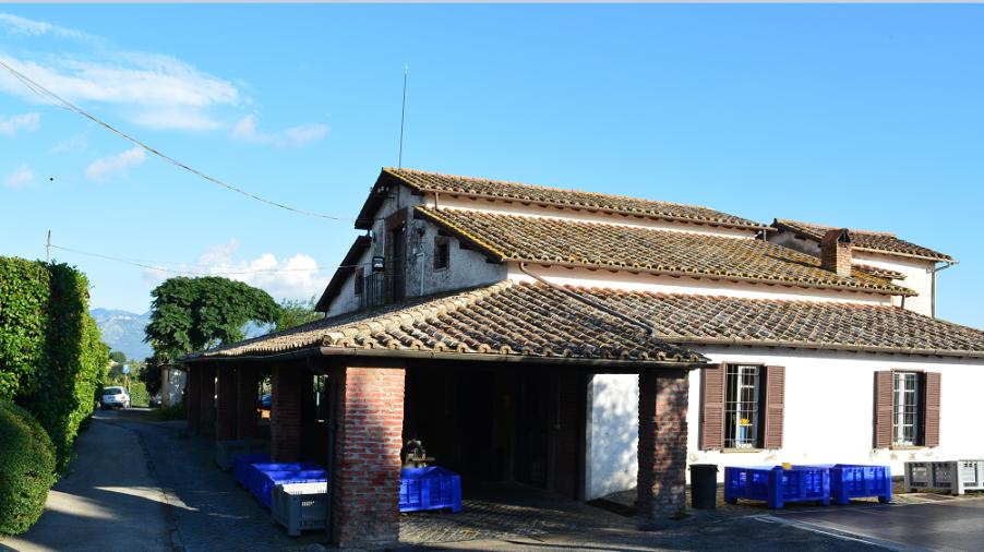 frantoio Santa Chiara Velletri