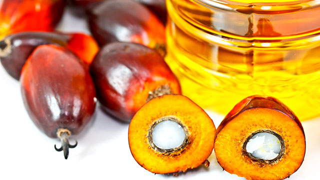 olio-di-palma-3