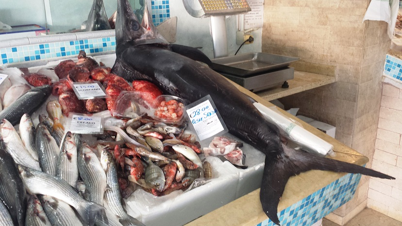 Pesce Spada Smeriglio E Verdesca Italiano E Genuino